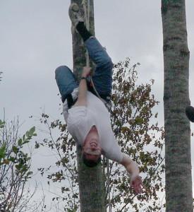Tree climbing rra